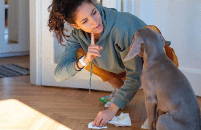 meilleure astuce pour nettoyer un parquet ciré